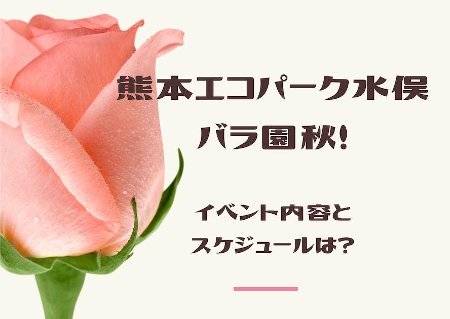エコパーク水俣バラ園2019年秋!イベント内容とスケジュールは?